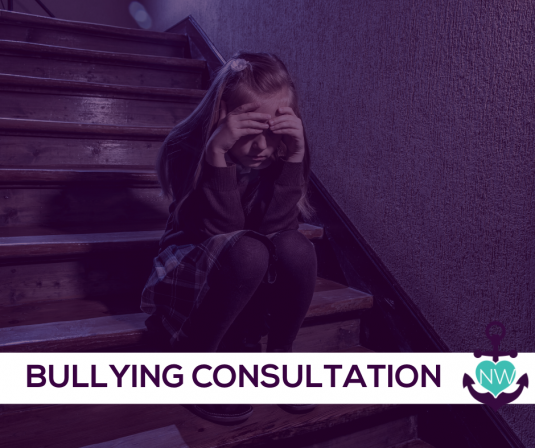 Website NW Bullying Consultation